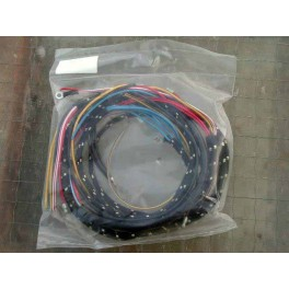 Wiring harness TRIUMPH 5T with tankpanel